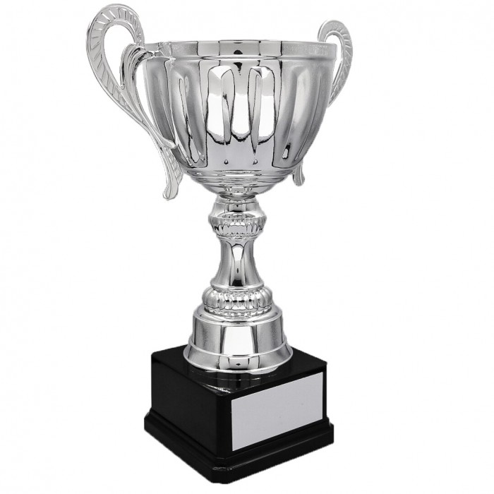 SILVER HANDLED TROPHY CUP ON SILVER RISER AVAILABLE IN 3 SIZES